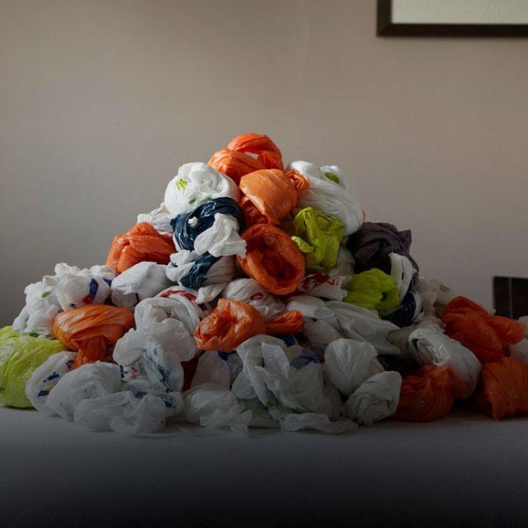 La intención es que el vecino empleé sacos ecológicos o carros para trasladar las compras y mejore la calidad de vida de la capital salteña.