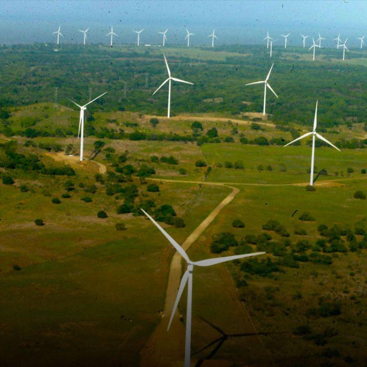 Están obligados por ley a cubrir sus requerimientos con un 8% de energía renovable a fines de 2017.