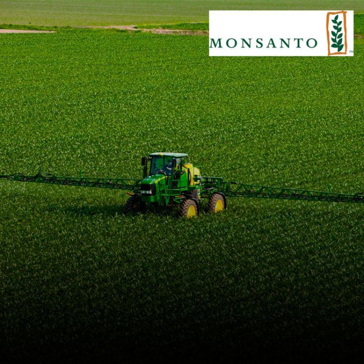 """""""Bayer confirma negociaciones avanzadas con Monsanto en relación con una propuesta de compra"""", dijo la firma."""