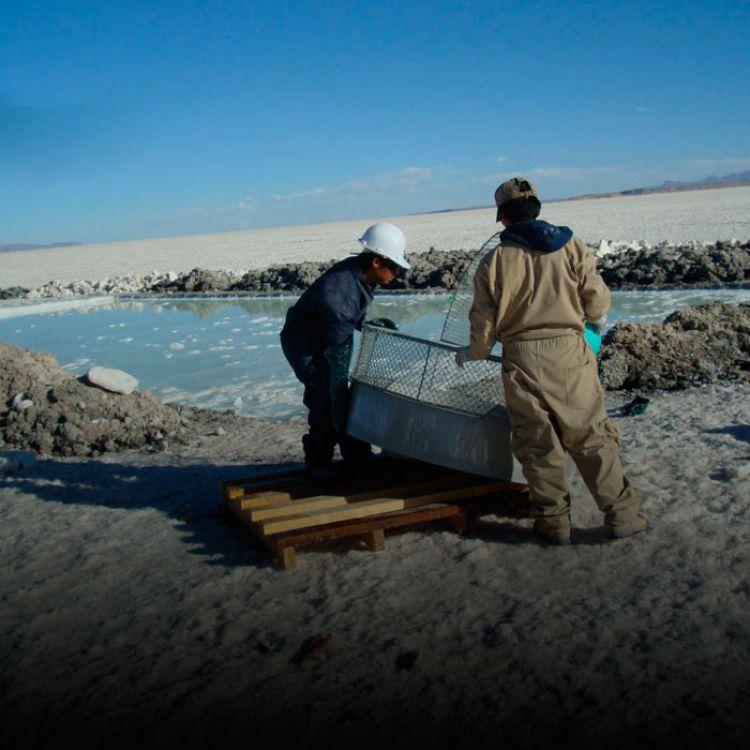 La firma se encuentra buscando activamente proyectos mineros globales que contribuyan a fortalecer su estrategia de desarrollo sostenible.