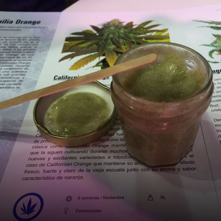 laCámara de Diputadosde Salta incluyedos proyectos de ley para que Salud Pública garantice el uso medicinal del aceite canábico.