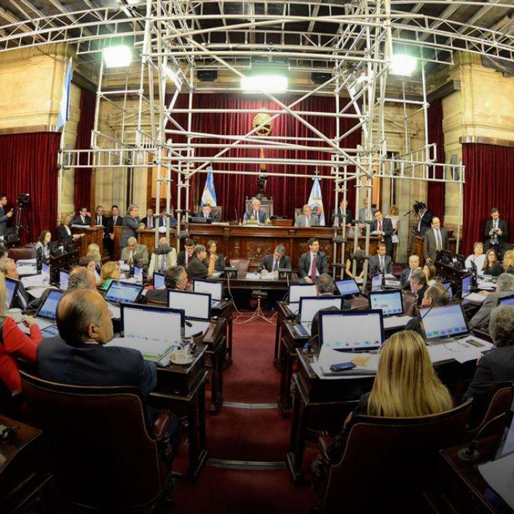 El senado argentino aprobó la iniciativa con 45 votos a favor y sólo 13 en contra.