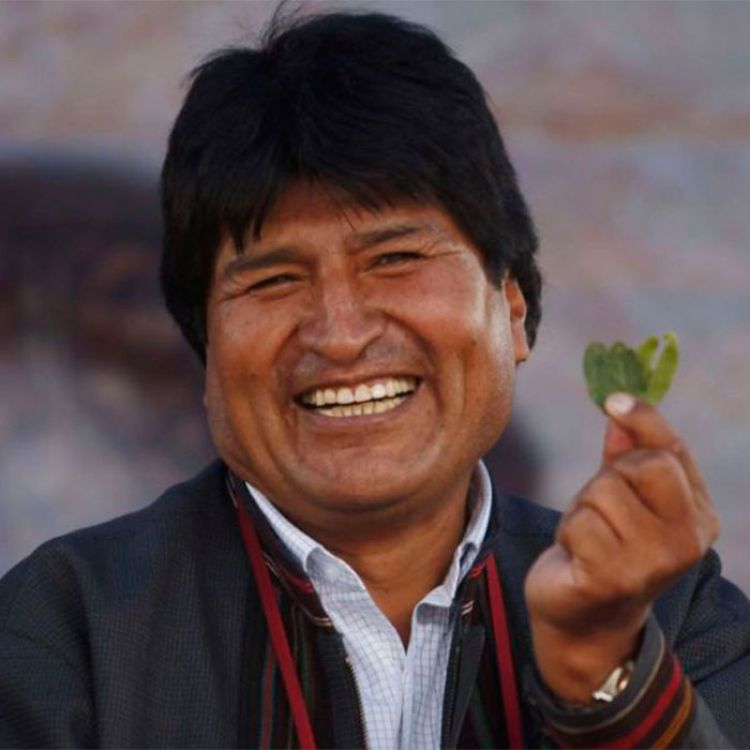 Una ley en Bolivia permite ampliar los sembradíos de coca