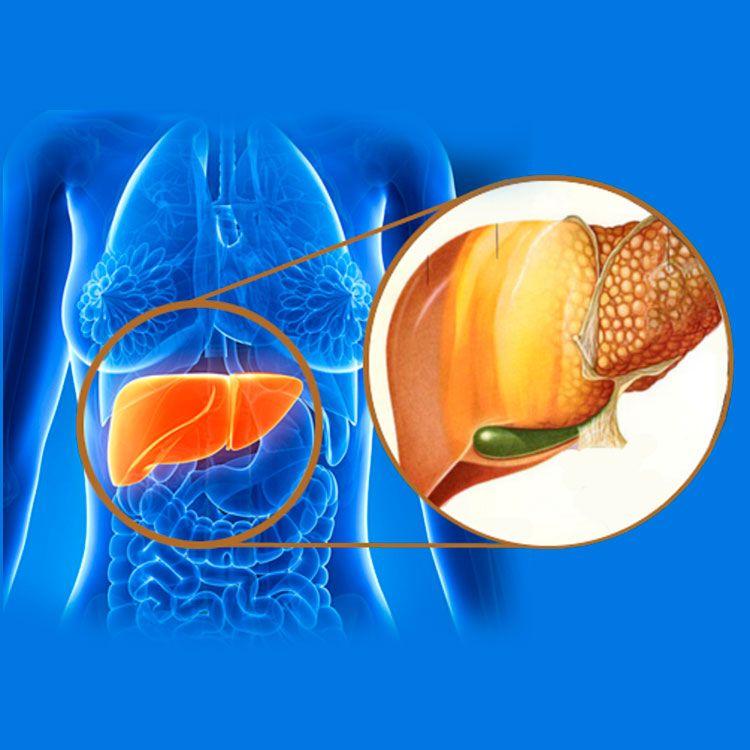 Hígado graso. Exceso de toxinas en tu cuerpo y engorde repentino