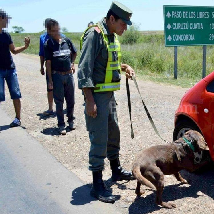 Gendarmería llegó a realizar una decena de allanamientos con los que se desmembró la organización.