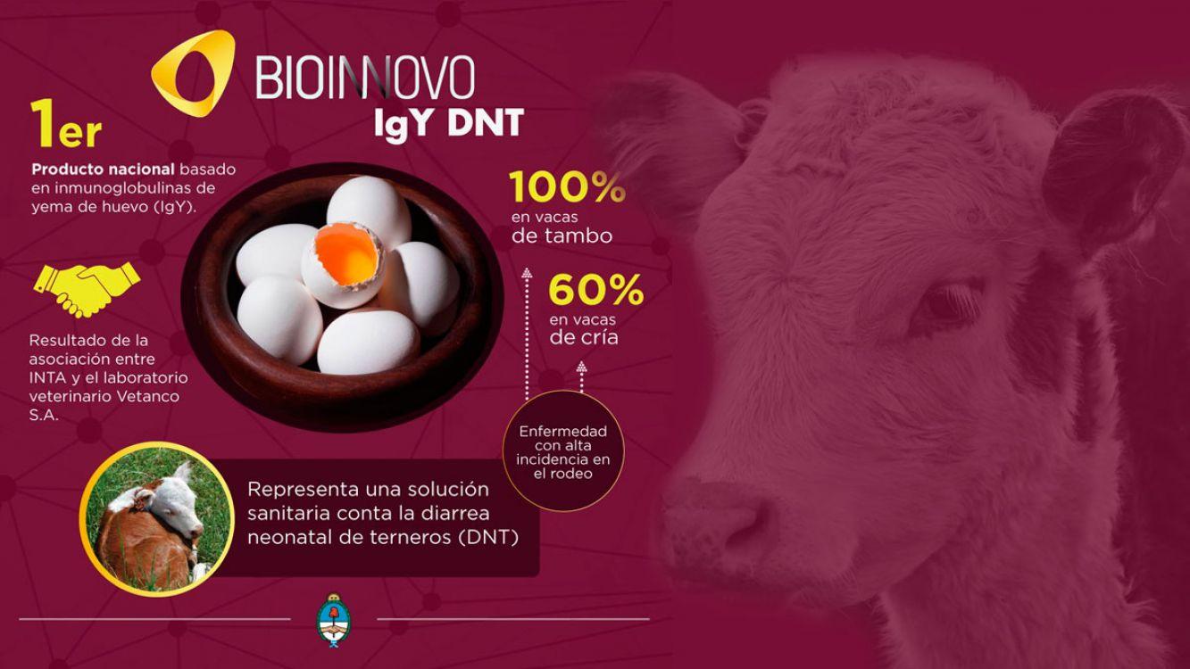Lanzan al mercado el primer producto biotecnológico mundial que reducirá la muerte de terneros