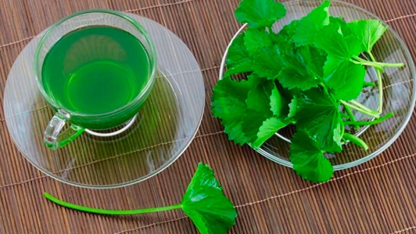 La bebida que desinflama los órganos digestivos y te hace bajar de peso