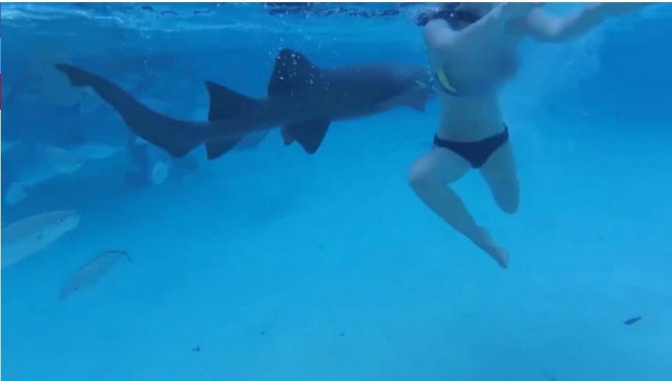 Una mujer es atacada por un tiburón en su luna de miel