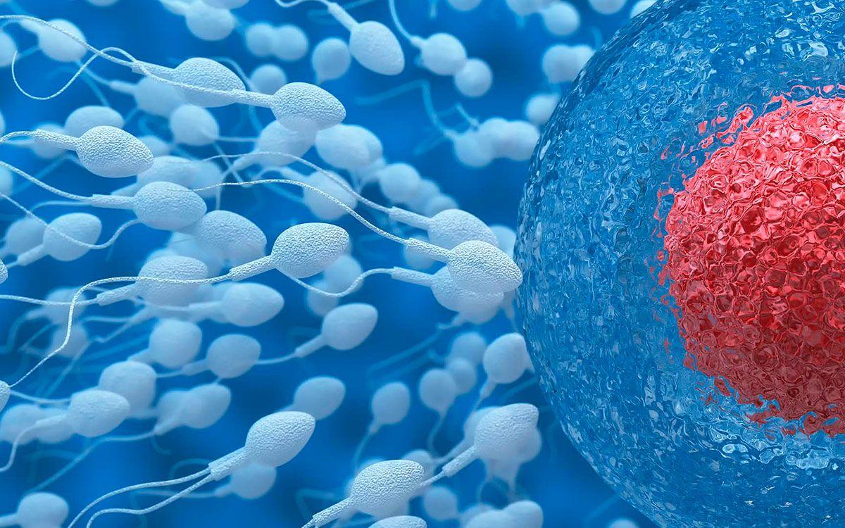 Los 3 nuevos métodos más prometedores de control de natalidad masculino