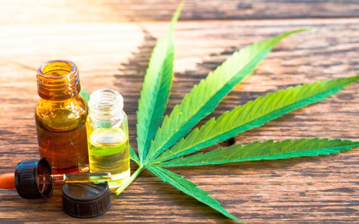 El gobierno de Jujuy firmó un acuerdo para desarrollar una granja de cultivo de marihuana medicinal