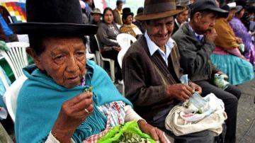 La ingesta de hojas de coca en Jujuy es una costumbre milenaria, prácticamente un ritual identitario