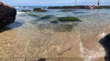 Mar del Plata y la zona se debió a la falta de viento, que provocó el decantamiento de la arena