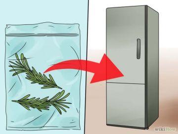 Guardar el romero en bolsa y conservar en el freezer