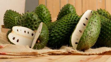 El fruto de la Guanábana