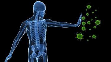 Eleva el sistema inmunológico